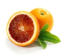 Blood Oranges with Leaf